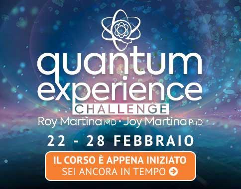 Challenge Quantum Experience Gratis
