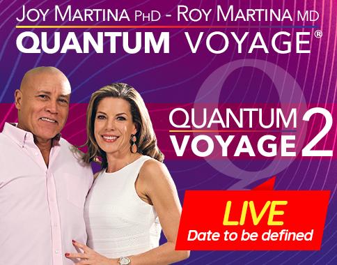 Quantum Voyage 2